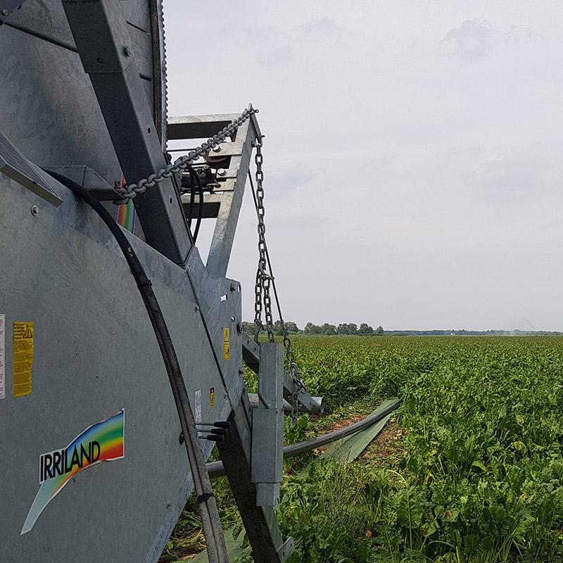 Immagin di campo con coltivazione, attraversato da tubo sistema protector